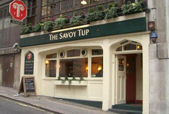 Savoy Tup