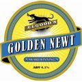 Golden Newt