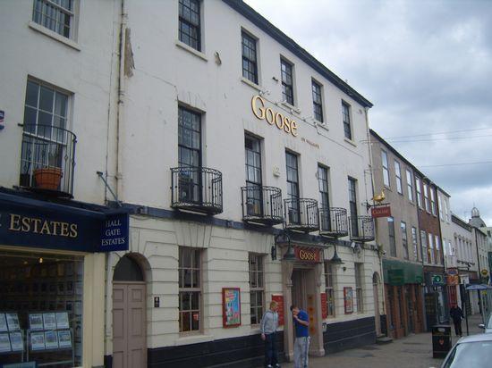 Goose at Doncaster