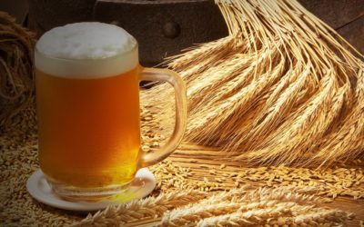 Know Your Beers – Our Guide To Wheat Beer!